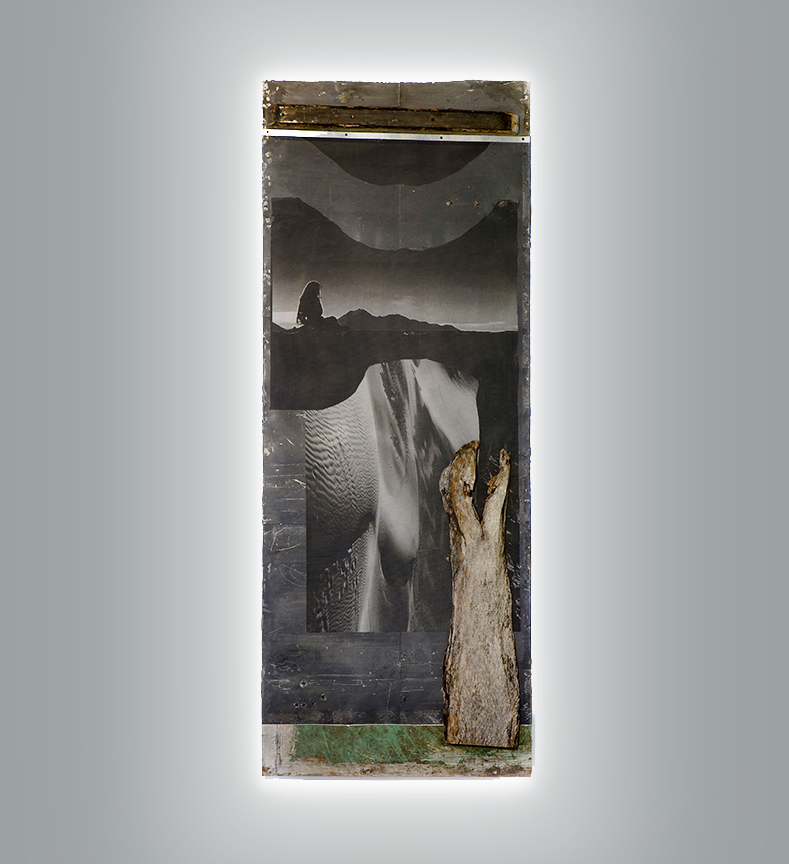 Dessert Meditation, 2016, Mixed media, on antique door with light, 92 x 35 in.