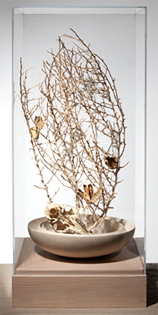 Tumble Eye, 2011, Tumbleweed and desert objects, 40.75 x 17.75 x 17.75 in.